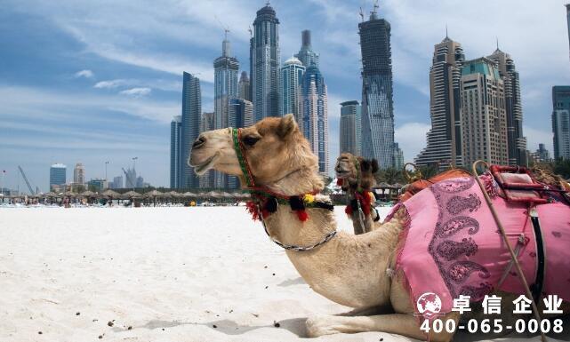 注册迪拜公司注意事项有哪些